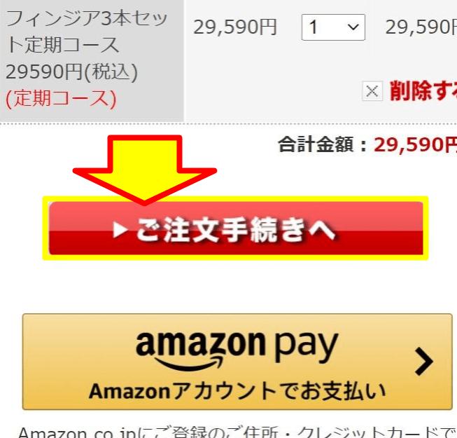 「ご注文手続きへ」のボタンが表示された公式サイト画面